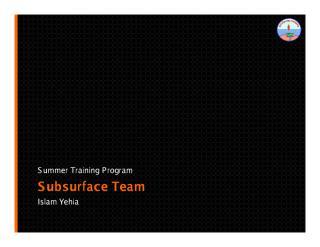 Summer Training Program - Subsurface Team.pdf