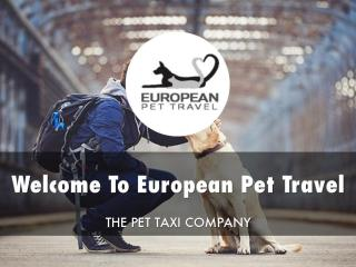 European Pet Travel Presentation.pdf