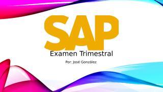 SAP Project.pptx