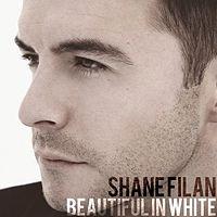 Shane Filan - Beautiful In White (DJ Ronny Remix).mp3